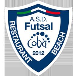 logo-futsal