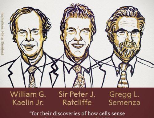 Premio Nobel Medicina 2019 : L'importanza dell'ossigeno per le cellule